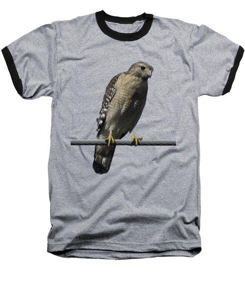 Red-shouldered Hawk Transparency Baseball T-Shirt