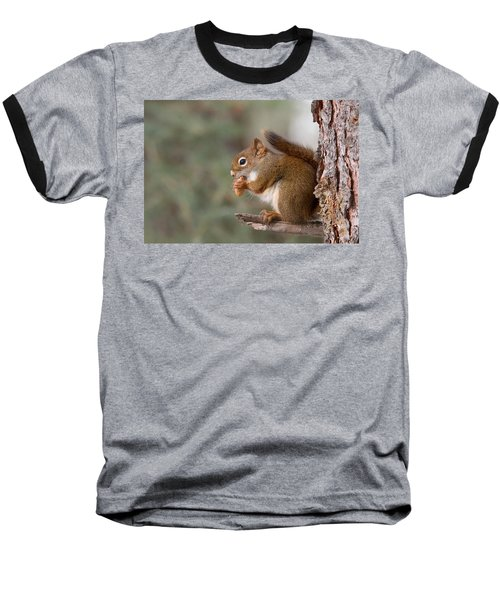 Red Squirrel Baseball T-Shirt