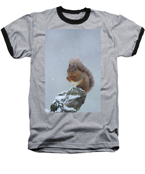 Red Squirrel In A Blizzard Baseball T-Shirt