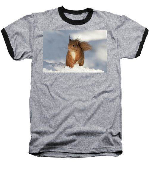 Red Squirrel In The Snow Baseball T-Shirt