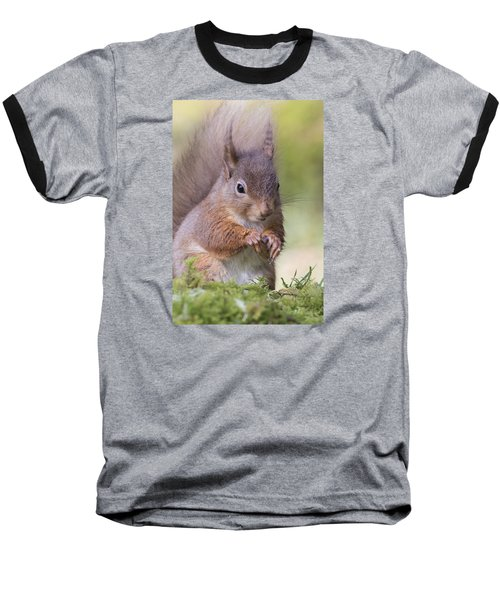 Red Squirrel - Scottish Highlands #1 Baseball T-Shirt