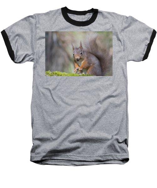 Red Squirrel - Scottish Highlands #26 Baseball T-Shirt