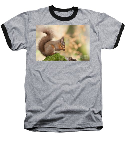 A Moment Of Meditation - Red Squirrel #27 Baseball T-Shirt