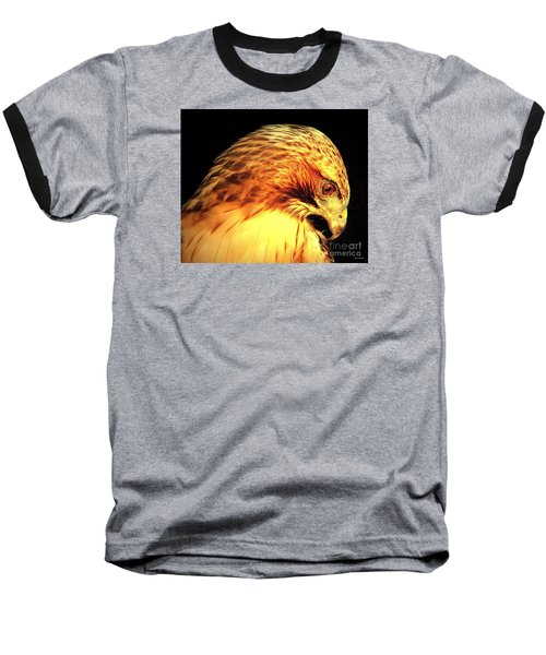 Red Tail Hawk  Baseball T-Shirt