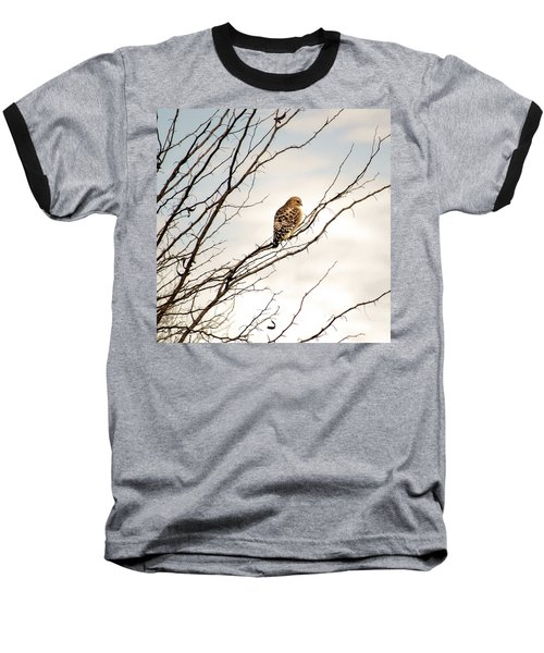 Red-tailed Hawk Baseball T-Shirt