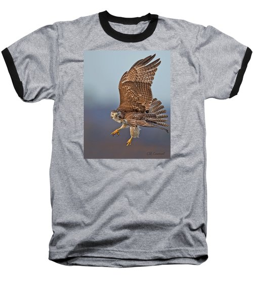 Red-tailed Hawk In Flight Baseball T-Shirt by CR  Courson