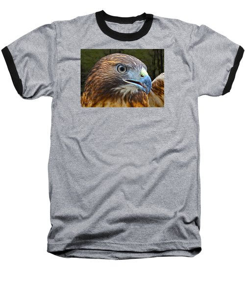 Red-tailed Hawk Portrait Baseball T-Shirt by Sandi OReilly