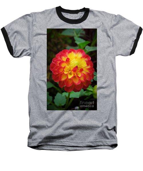 Red Tipped Petals Baseball T-Shirt