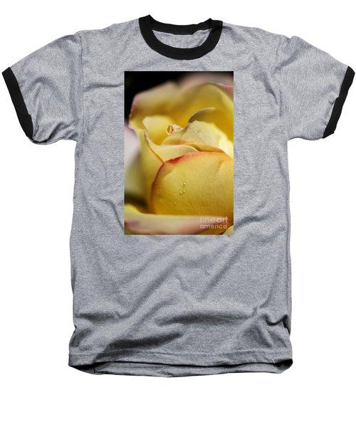 Red Tipped Yellow Rose Baseball T-Shirt by Joy Watson