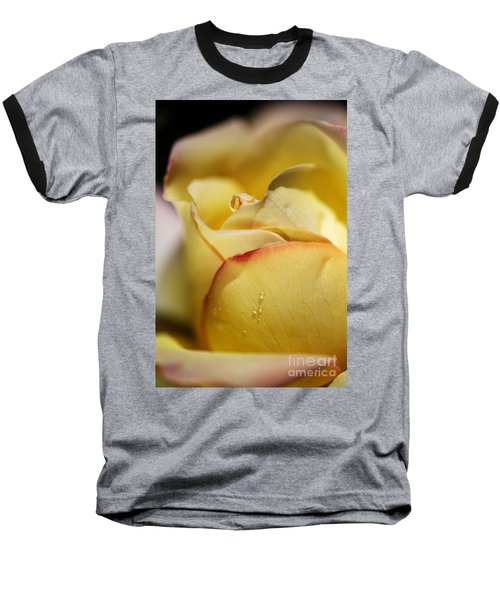 Red Tipped Yellow Rose Baseball T-Shirt