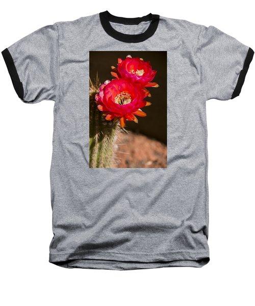 Red Tops Baseball T-Shirt by Laura Pratt