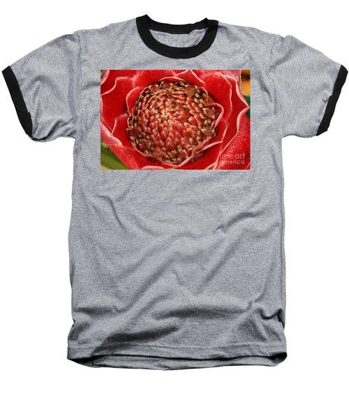 Red Torch Ginger 2 Baseball T-Shirt