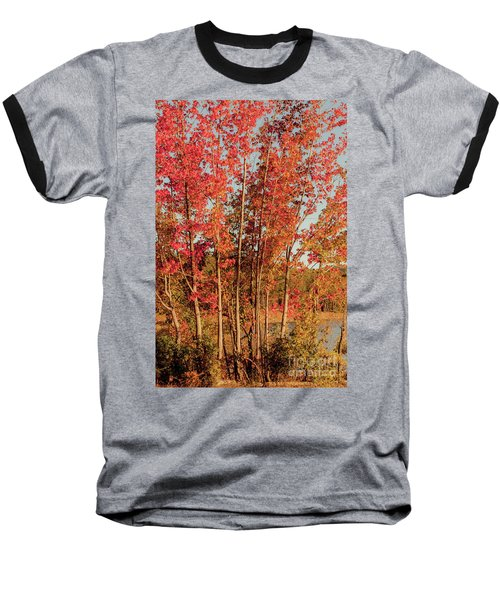 Baseball T-Shirt featuring the photograph Red Trees by Iris Greenwell