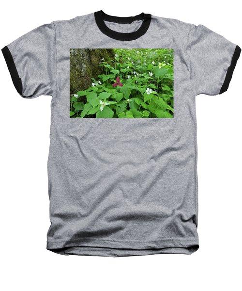 Red Trillium At Center Baseball T-Shirt by Alan Lenk