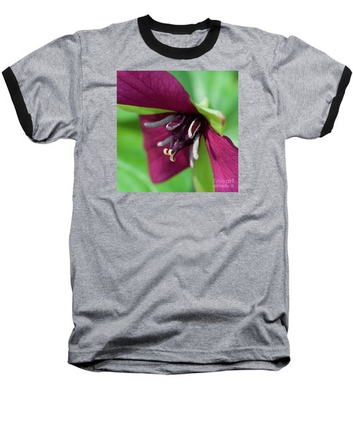 Red Trillium.. Baseball T-Shirt