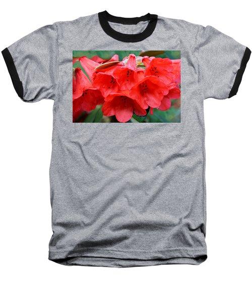 Red Trumpet Rhodies Baseball T-Shirt