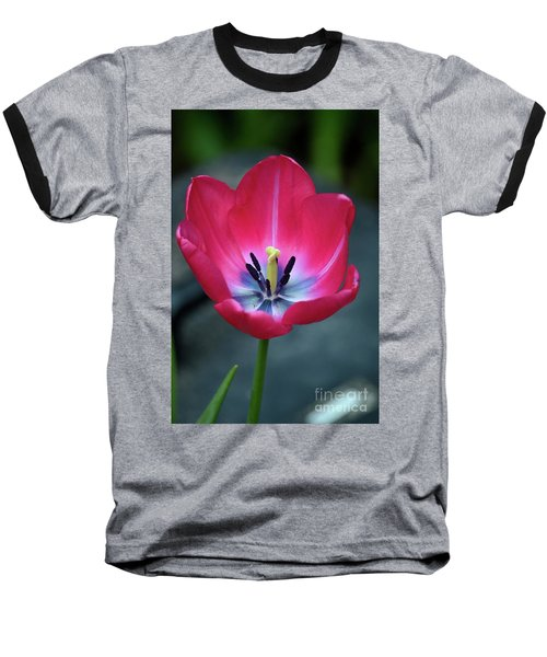 Red Tulip Blossom With Stamen And Petals And Pistil Baseball T-Shirt