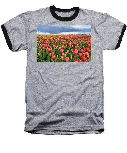 Red Tulip Field Baseball T-Shirt