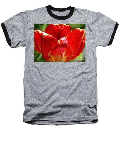 Red Tulip Baseball T-Shirt by Sarah Loft