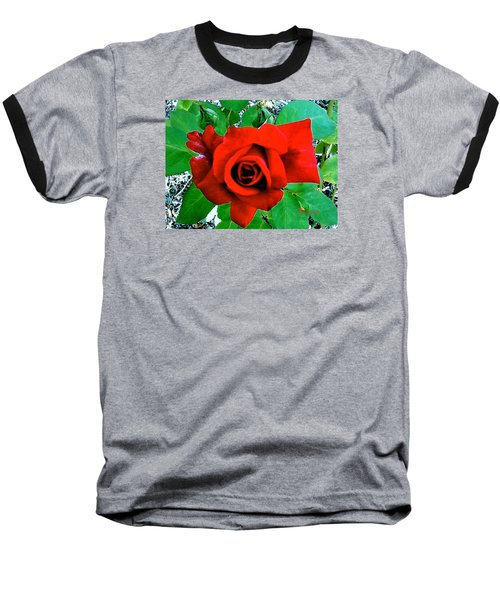Baseball T-Shirt featuring the photograph Red Velvet Rose by Sadie Reneau