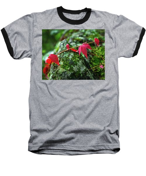 Baseball T-Shirt featuring the photograph Red Vine by Bill Pevlor
