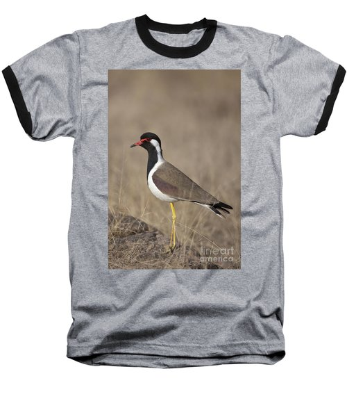 Red-wattled Lapwing Baseball T-Shirt