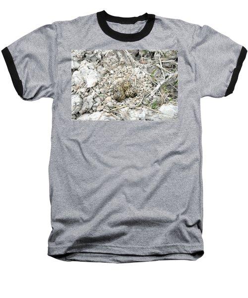 Red-wattled Lapwing Nest Baseball T-Shirt