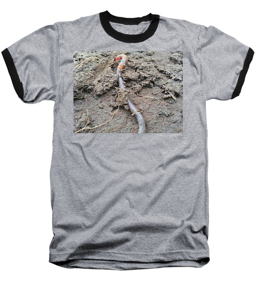 Baseball T-Shirt featuring the photograph Red Wiggler by Robert Knight