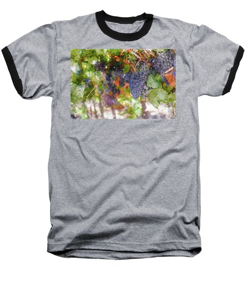 Red Wine Grapes On The Vine In Wine Country Baseball T-Shirt