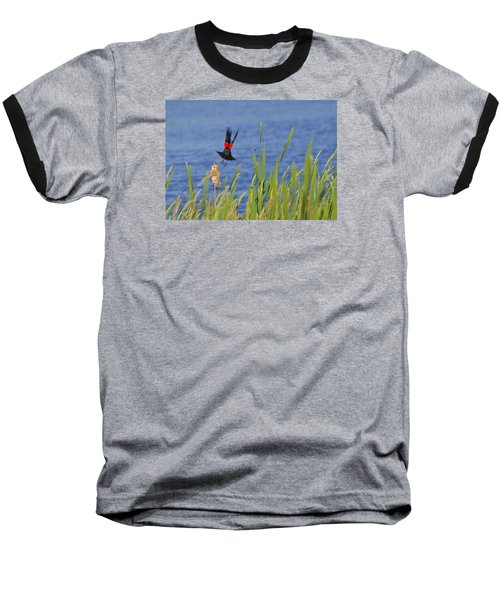 Red Wing Bow Baseball T-Shirt by Shelly Gunderson