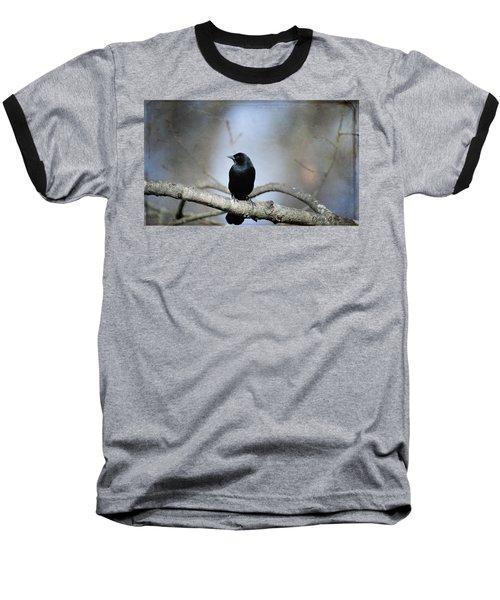 Red-winged Blackbird Baseball T-Shirt by Diane Giurco