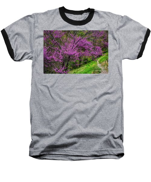 Baseball T-Shirt featuring the photograph Redbud And Path by Thomas R Fletcher