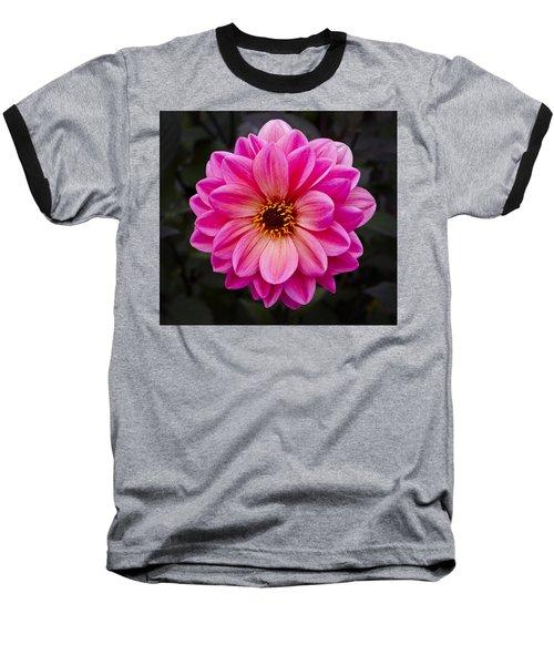 Reddish Dahlia Baseball T-Shirt