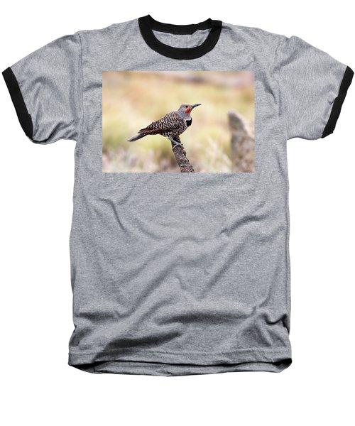 Redshafted Northern Flicker Baseball T-Shirt