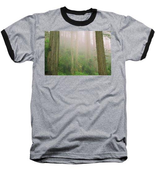 Redwoods Fog Baseball T-Shirt