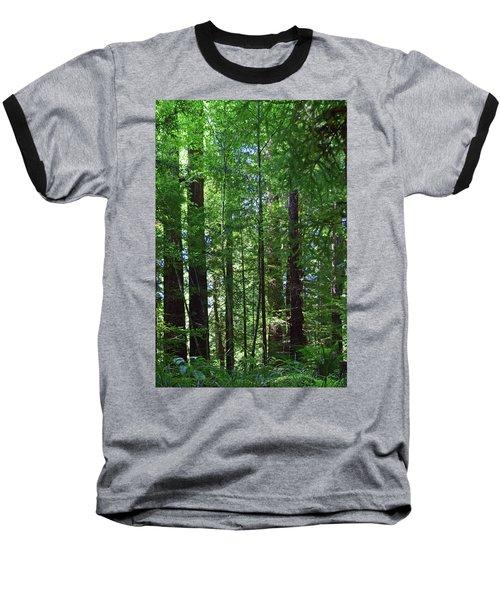 Redwoods No. 3-1 Baseball T-Shirt