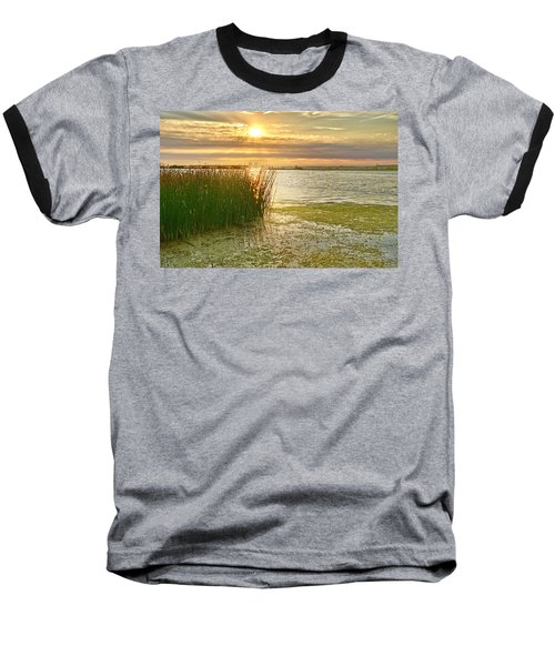 Reeds In The Sunset Baseball T-Shirt