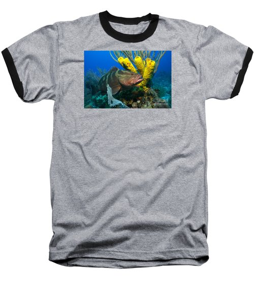 Baseball T-Shirt featuring the photograph Reef Denizon by Aaron Whittemore