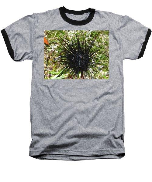 Reef Life - Sea Urchin 1 Baseball T-Shirt by Exploramum Exploramum