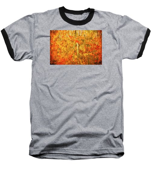 Reflections Of Fall Baseball T-Shirt by Rick Furmanek