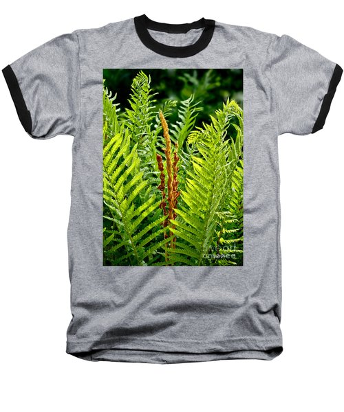 Refreshing Green Fern Wall Art Baseball T-Shirt