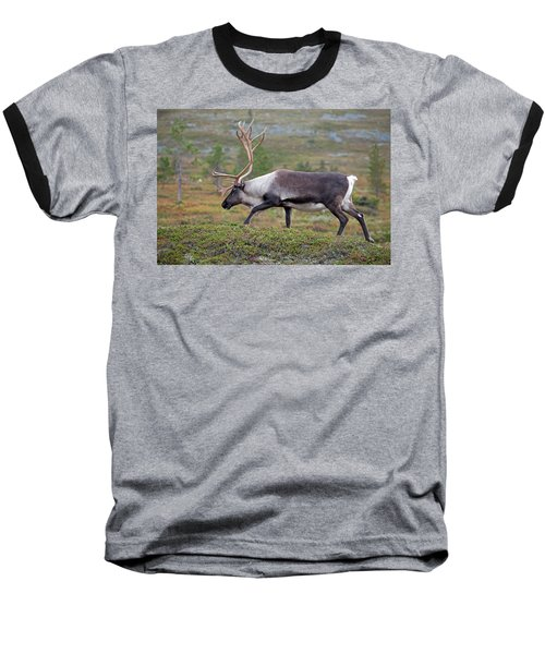 Reindeer Baseball T-Shirt