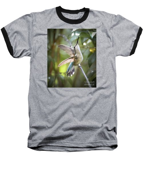 Rejoice Baseball T-Shirt by Amy Porter