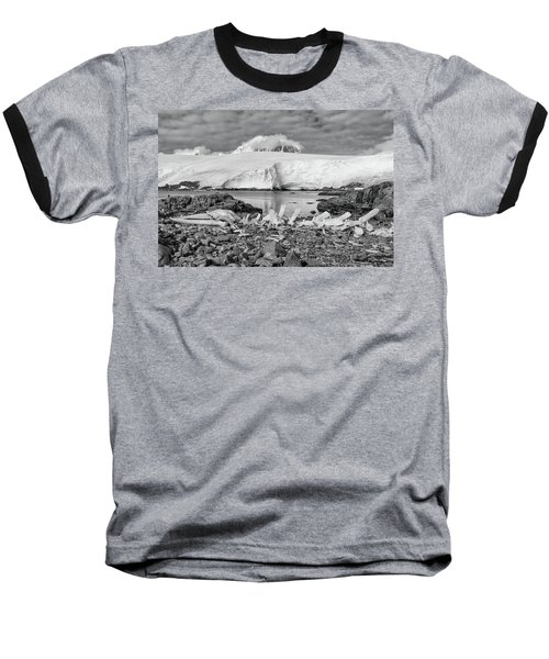 Baseball T-Shirt featuring the photograph Remains Of A Giant by Alan Toepfer