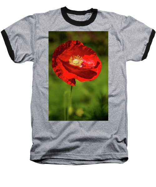 Remembering Baseball T-Shirt