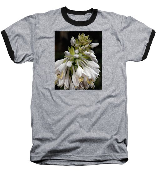 Renaissance Lily Baseball T-Shirt by Marie Hicks