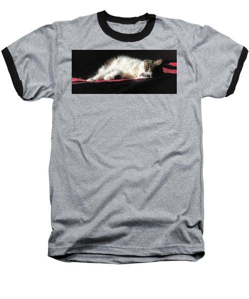 Resting Cat Baseball T-Shirt by Maciek Froncisz
