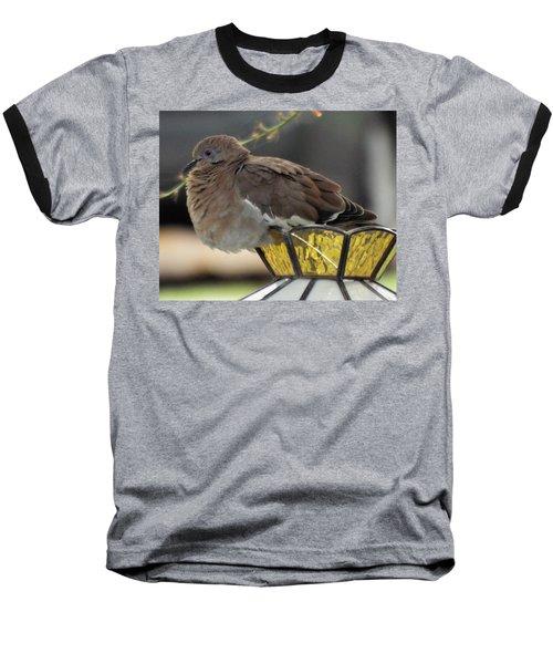 Resting Dove Baseball T-Shirt