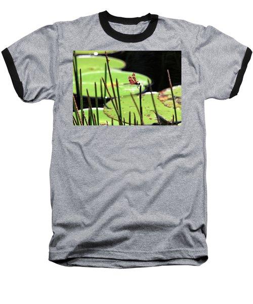 Resting Dragonfly Baseball T-Shirt