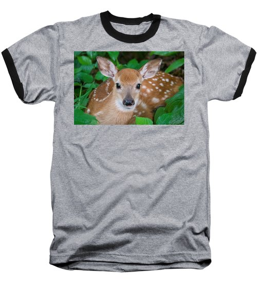 Resting Fawn Baseball T-Shirt